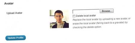 Плагин аватарки для wordpress